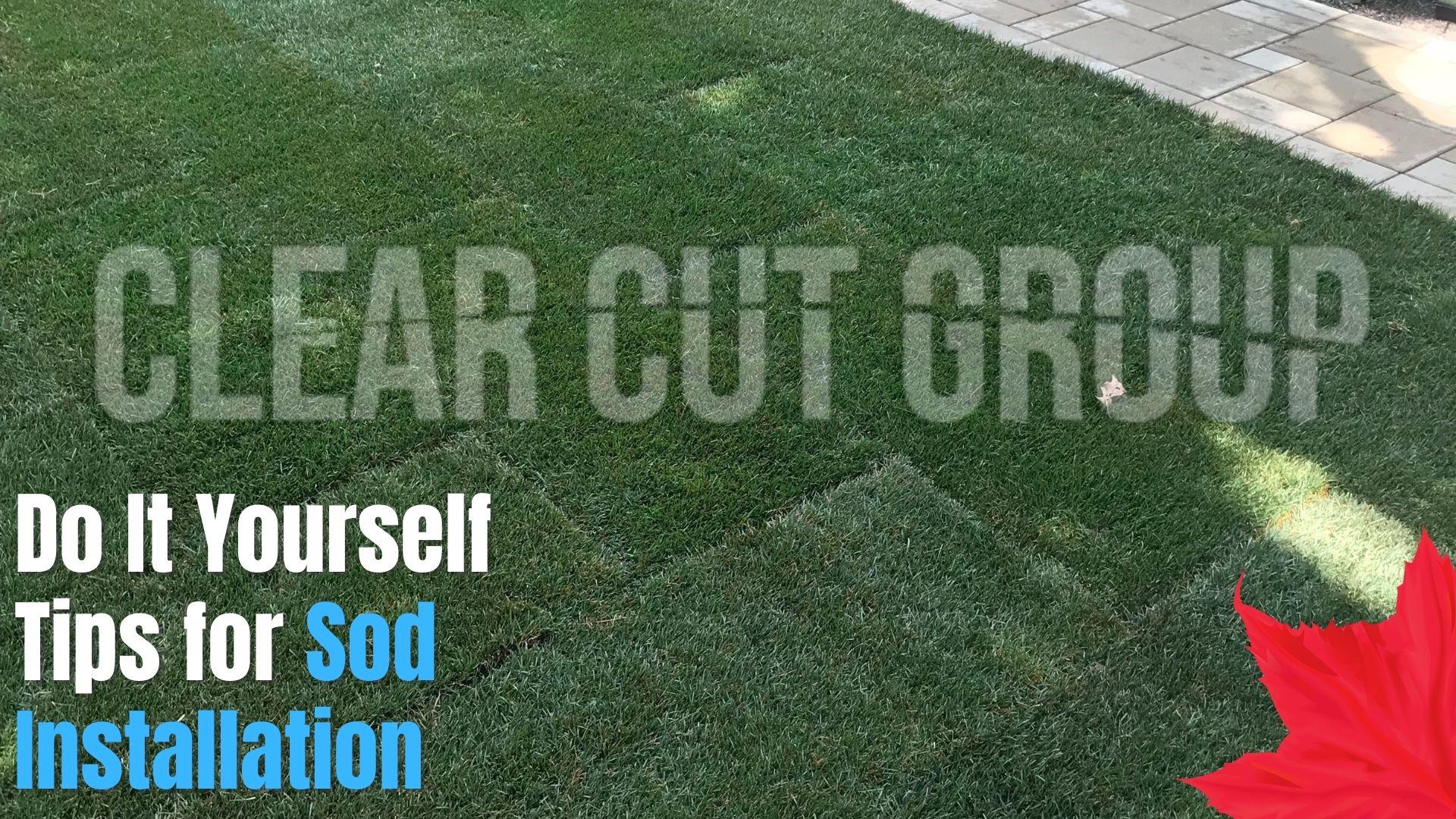 tips for sod installation