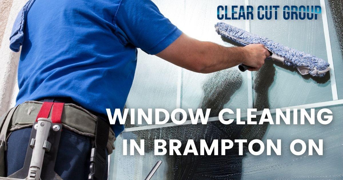 window cleaning in brampton on
