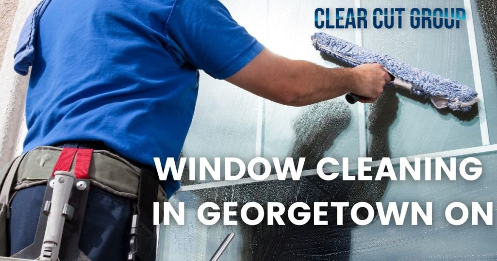 window cleaning georgetown ON