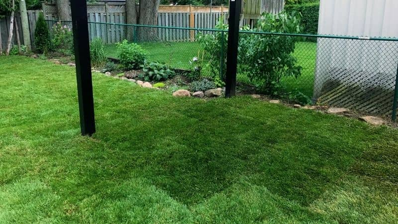 property maintenance in Georgetown, ON