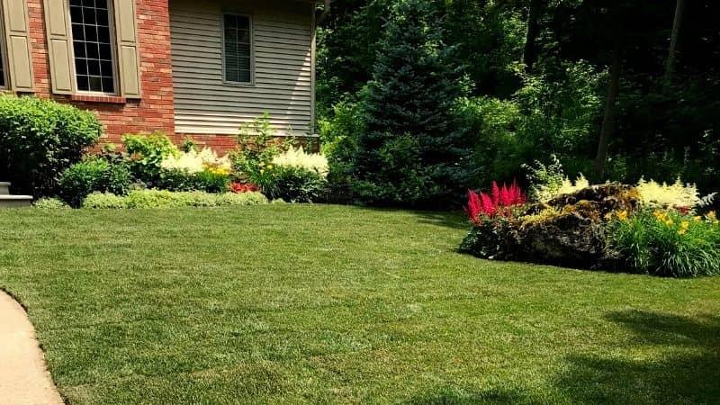 property maintenance in Hamilton