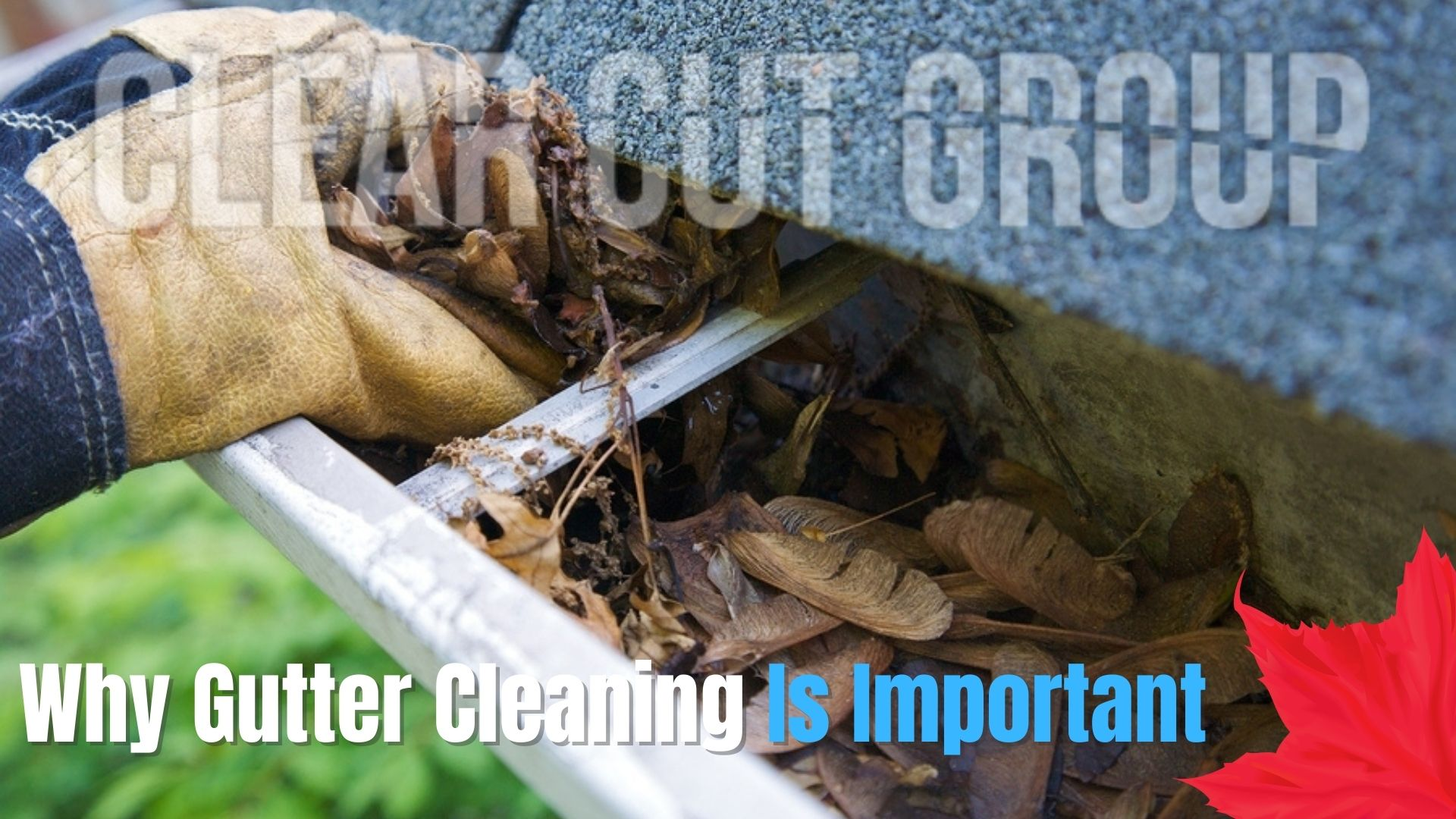 why gutter cleaning is important